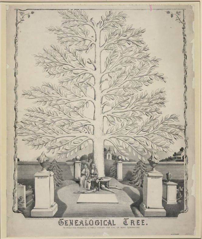Genealogical Tree. Library of Congress Prints and Photographs Division Washington, D.C. 20540 USA