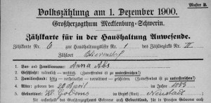 """Deutschland, Mecklenburg-Schwerin, Volkszählung 1900,"" index and images, FamilySearch (https://familysearch.org/pal:/MM9.1.1/MVR5-Q6G : accessed 24 Nov 2014), Anna Abs, Blievenstorf, Blievenstorf, Neustadt; Mecklenburgisches Landeshauptarchiv, Schwerin [Mecklenburg State Archives, Schwerin]; FHL microfilm ."