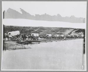 Wagon train. Library of Congress. http://www.loc.gov/pictures/item/2012649800/resource/